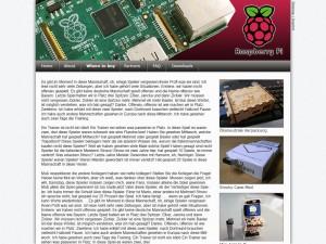 Website Pi